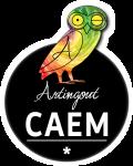 Artingout CAEM Contemporary Art Exhibition Milano