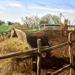Cavalli alla Marcigliana - olio su tela 90x70cm - Claudio Fabbricatore 2013