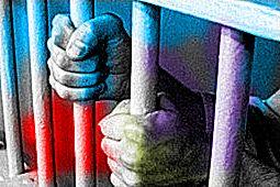 artisti prigionieri delle esclusive