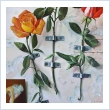 Gianni Baranello - illusioni - olio su tela 50x70